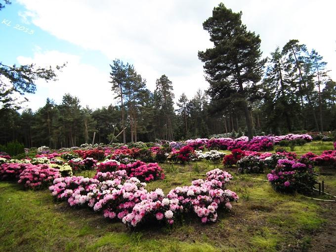 Gärtnerei 05