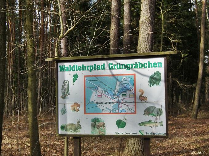 Grüngräbchen 03