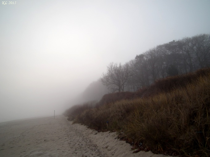 Nebel 03