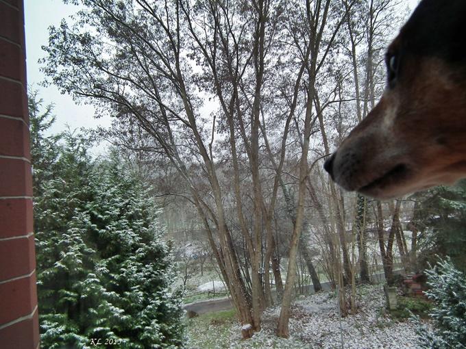 Schnee 02
