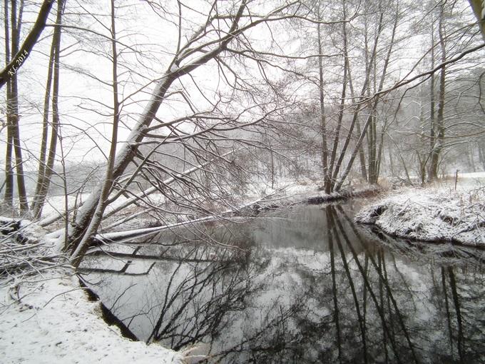 Schnee-Aue 03