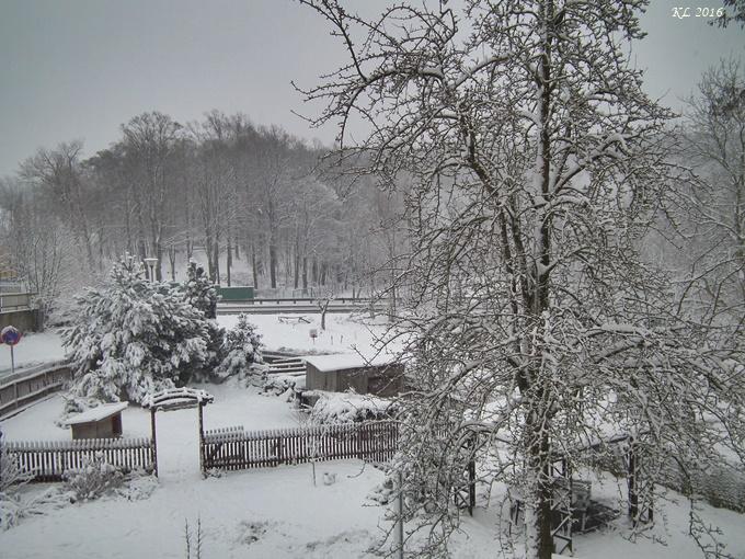 Wintereinbruch 01