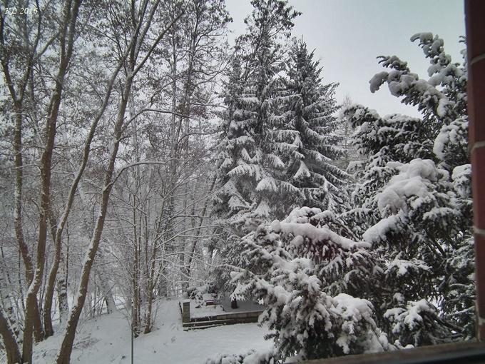 Wintereinbruch 02